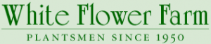 White Flower Farm Coupon Codes